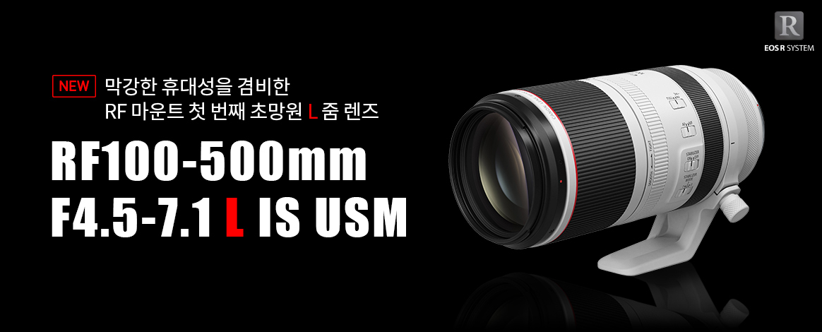 RF100-500mm F4.5-7.1 L IS USM