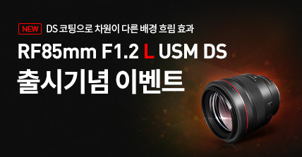 RF85mm DS